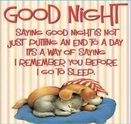 Good Night Quote for everyone