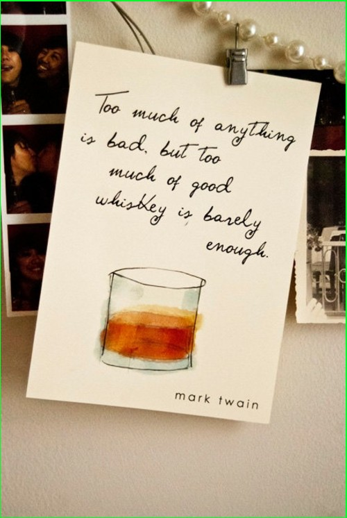 mark twain quotes twenty years from now