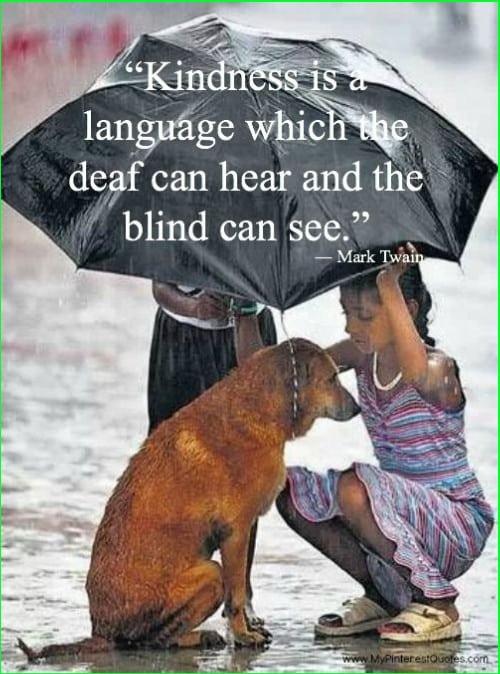 mark twain quotes kindness