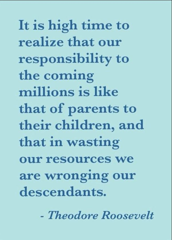 president theodore roosevelt quotes