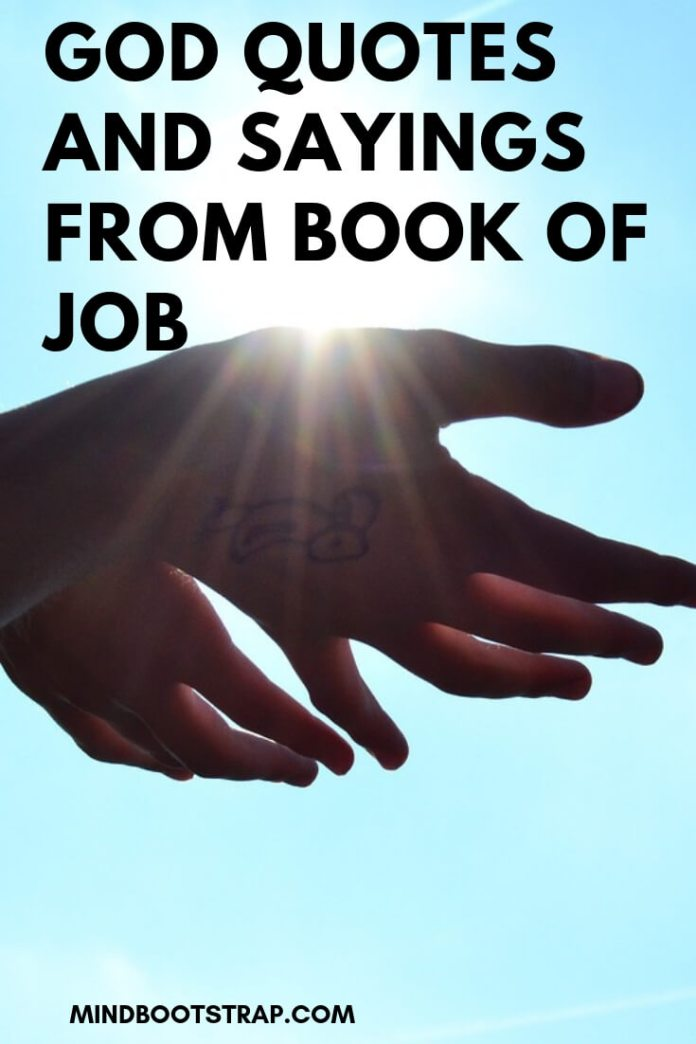 God Quotes and Sayings from Book of Job