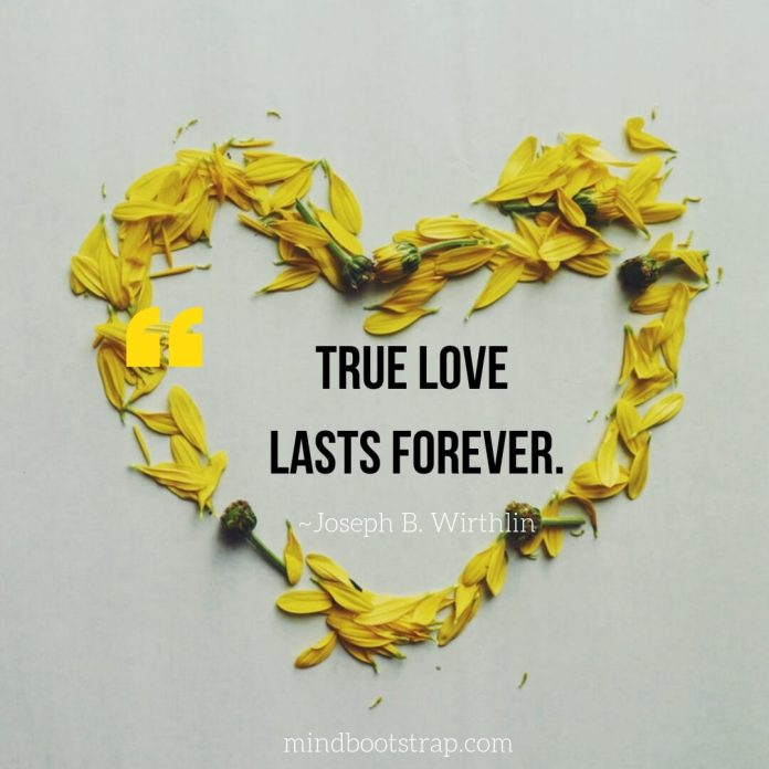 True Love Quotes & Sayings For Him or her   True love lasts forever.