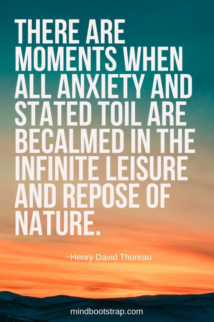 Henry David Thoreau Quotes About Nature | There are moments when all anxiety and stated toil are becalmed in the infinite leisure and repose of nature. -Henry David Thoreau