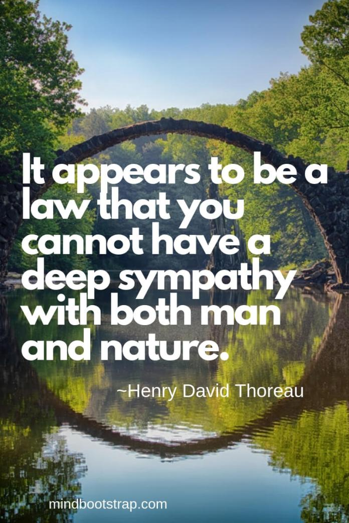 Henry David Thoreau Quotes About Nature | It appears to be a law that you cannot have a deep sympathy with both man and nature. -Henry David Thoreau