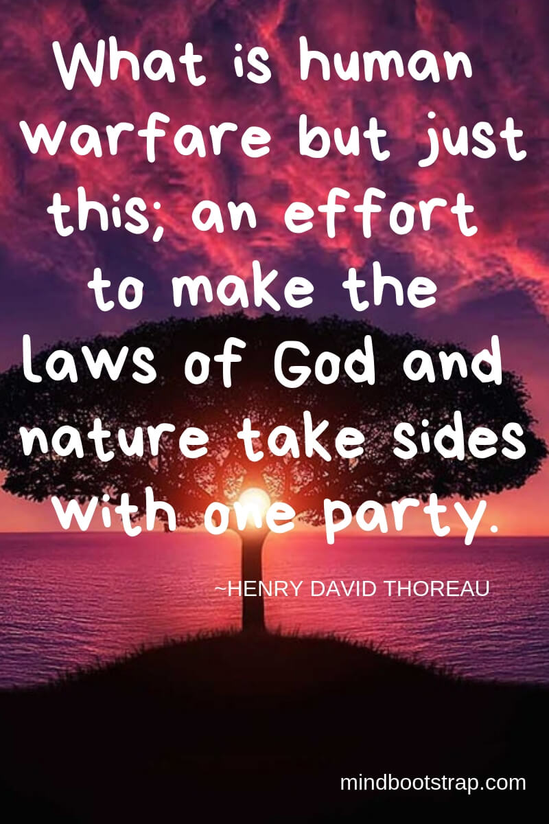 Henry David Thoreau Quotes About Nature | What is human warfare but just this; an effort to make the laws of God and nature take sides with one party. -Henry David Thoreau