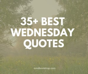 Best Wednesday quotes & sayings