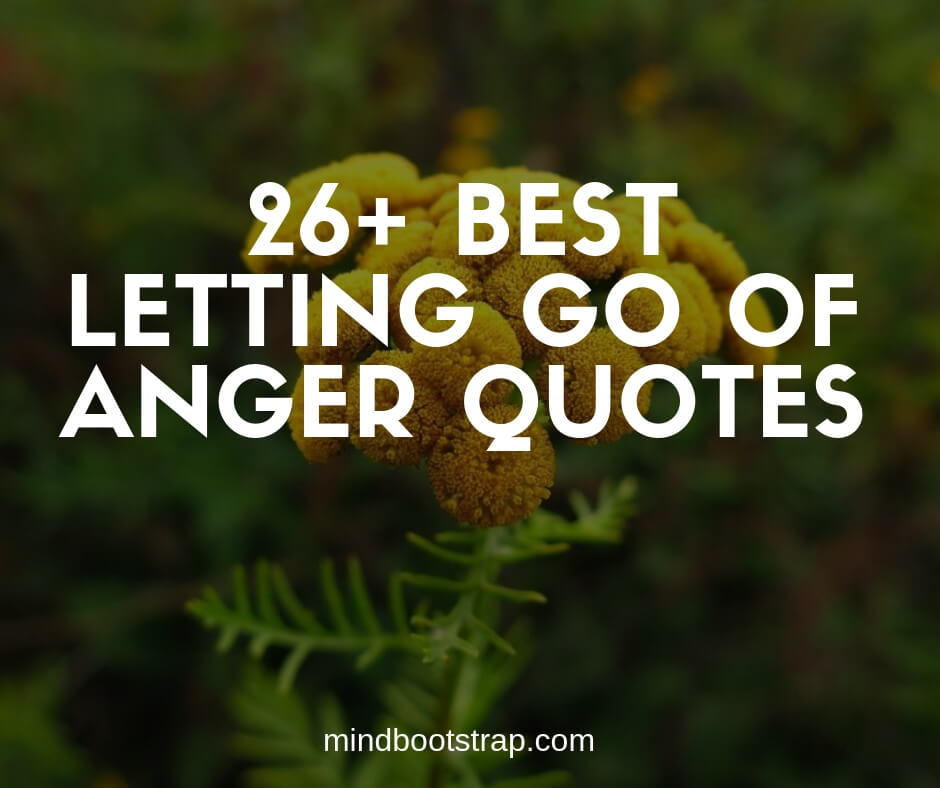 Best letting go of anger quotes and sayings