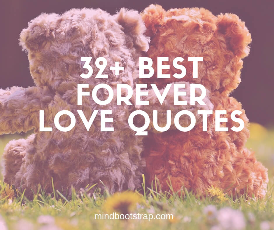32+ Best Forever Love Quotes and Sayings