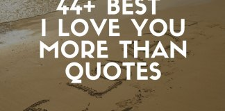 Best I love you more than quotes and sayings