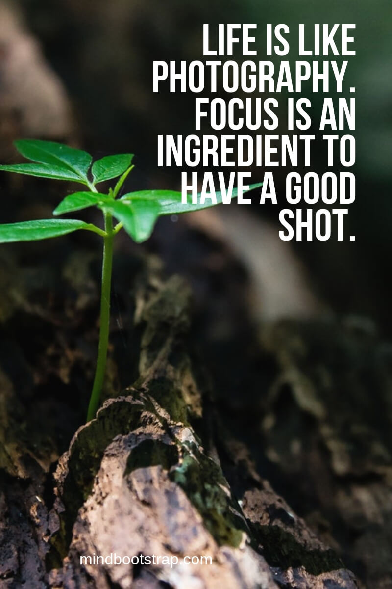 Life is like photography. Focus is an ingredient to have a good shot.