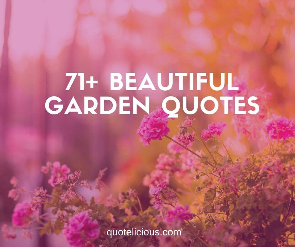 71+ Beautiful Garden Quotes and Sayings for Life and Happiness