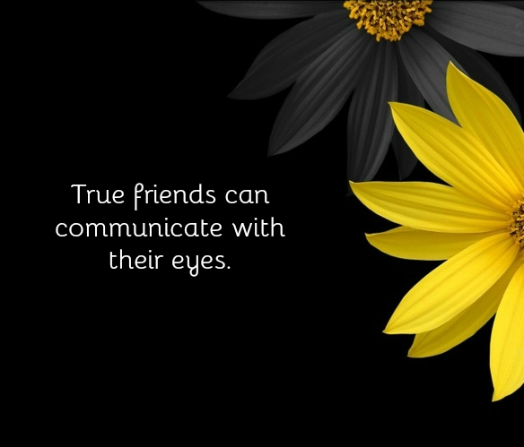 True Friend short Quotes 1