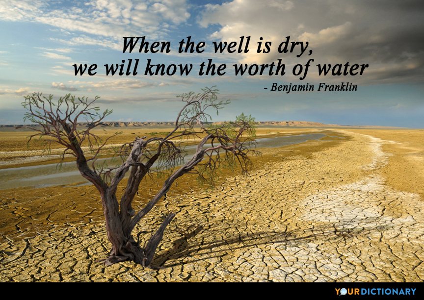 Image result for quotes about conservation