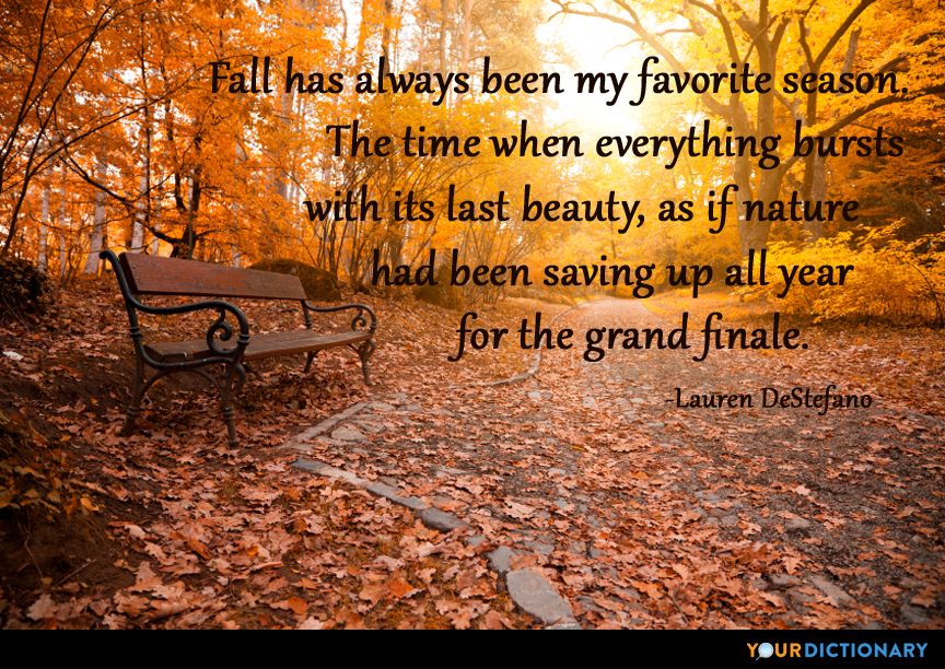 Fall has always been my favorite season The time