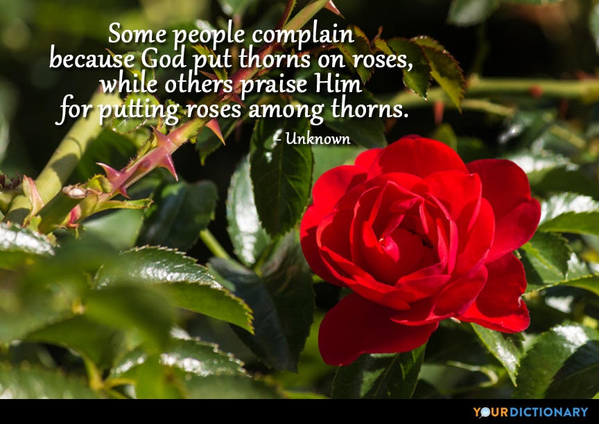 Some people complain because God put thorns on roses