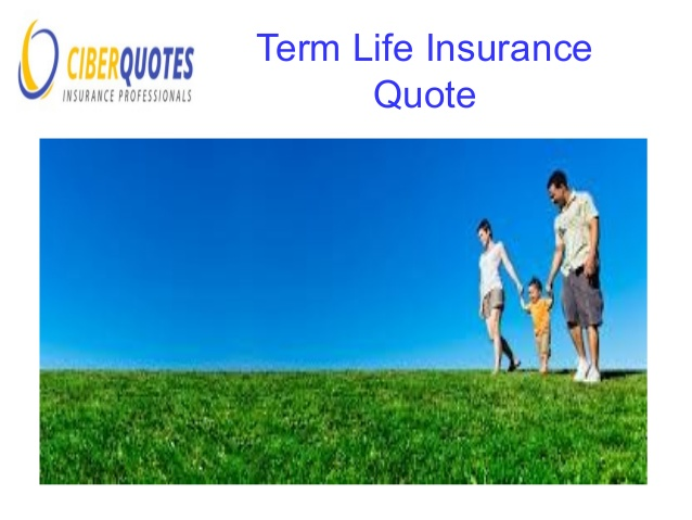 Best Life Insurance Quotes Online Custom Best Life Insurance Quotes Online & Pictures  Quotesbae