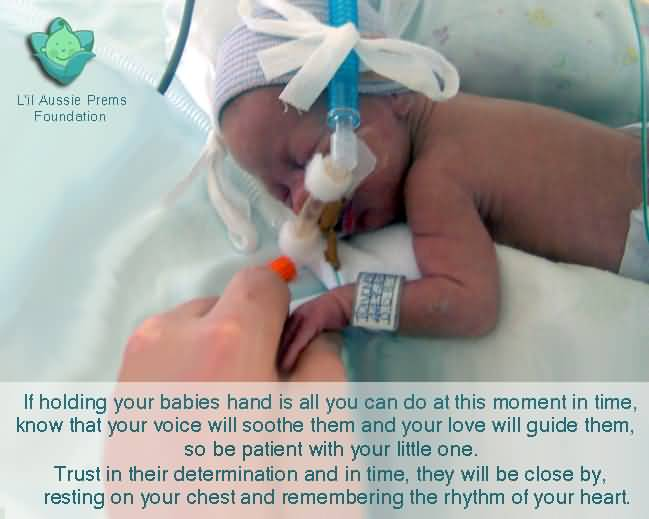 Premature Baby Quotes Custom Premature Baby Quotes Meme Image 19  Quotesbae