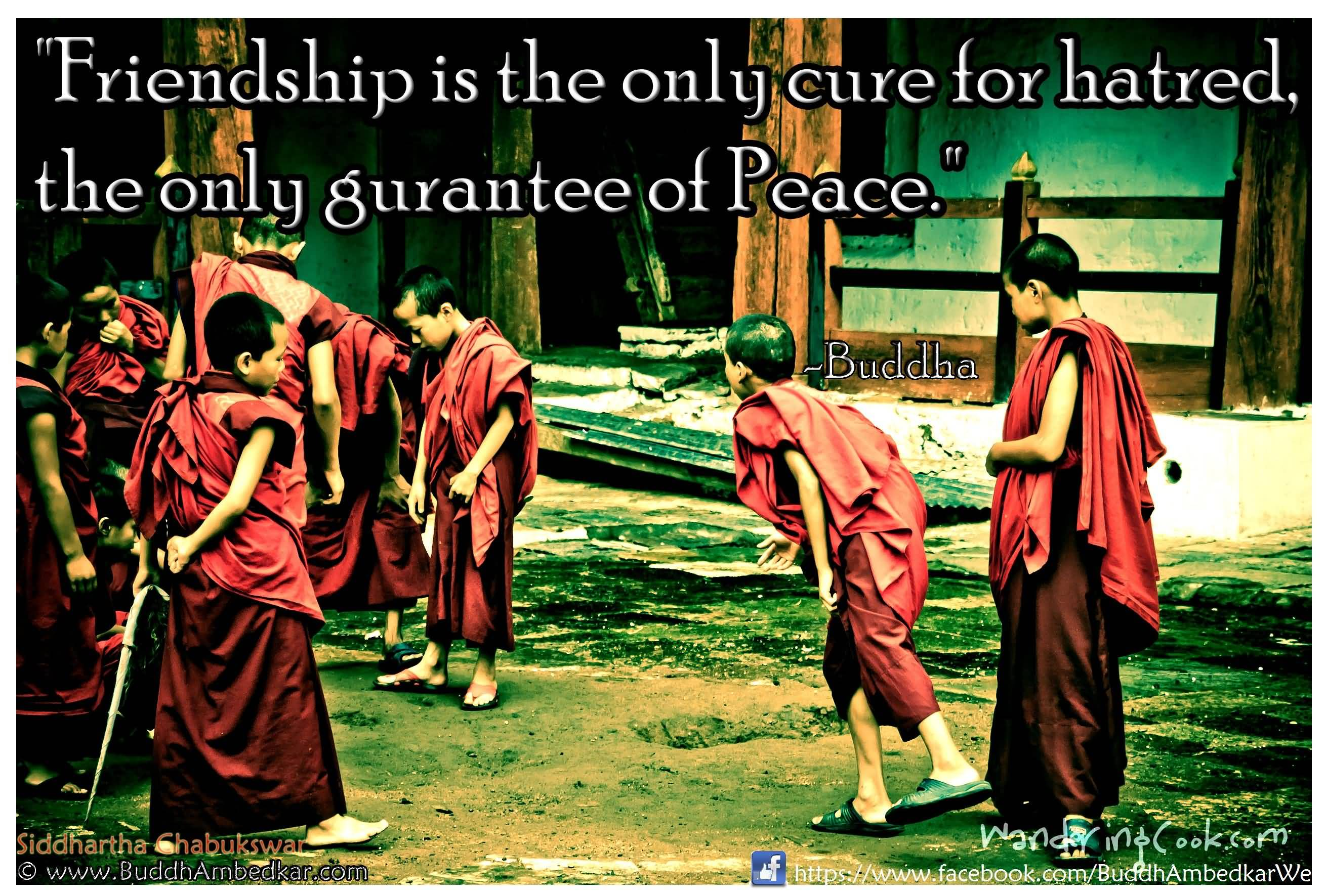 Buddha Quotes About Friendship 20 Buddha Quotes About Friendship Photos & Pictures  Quotesbae
