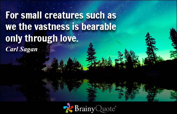 Carl Sagan Love Quote Captivating 20 Carl Sagan Love Quote Sayings Pictures & Images  Quotesbae