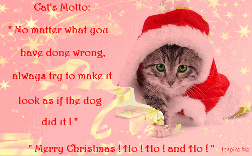 Christmas Quotes About Friendship Cool Christmas Quotes About Friendship 01  Quotesbae