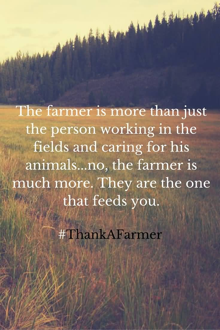 Farm Quotes 20 Farm Life Quotes Sayings Pictures U0026 Images Stock Quotesbae