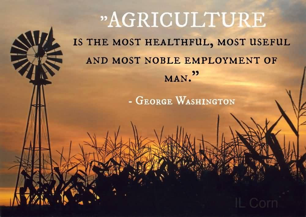 Farm Life Quotes Extraordinary Farm Life Quotes 12  Quotesbae