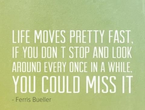 Ferris Bueller Life Moves Pretty Fast Quote Custom Ferris Bueller Life Moves Pretty Fast Quote 12  Quotesbae