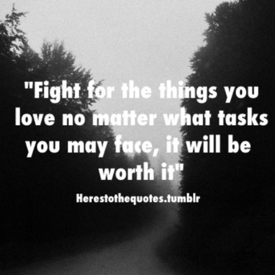 Fight For What You Love Quotes Extraordinary Fight For What You Love Quotes 14  Quotesbae