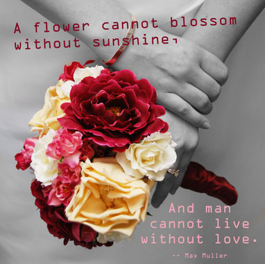 Quotes On Flowers And Love Custom Flowers Love Quotes 09  Quotesbae