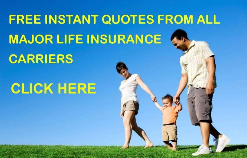 Free Term Life Insurance Quotes Captivating 20 Free Term Life Insurance Quotes Instant Images  Quotesbae