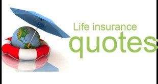 Free Whole Life Insurance Quotes Endearing Free Whole Life Insurance Quotes 20  Quotesbae