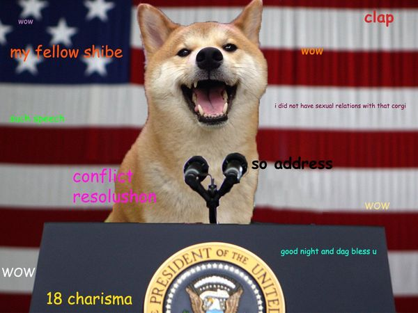 50 top doge meme graphics images funny pictures quotesbae funny doge meme photos solutioingenieria Choice Image