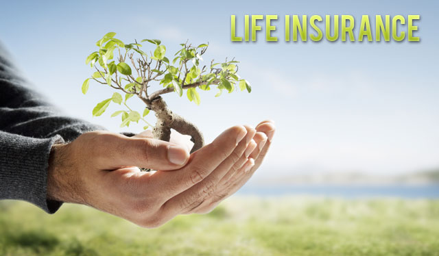 Get A Life Insurance Quote Pleasing Get Life Insurance Quotes 10  Quotesbae