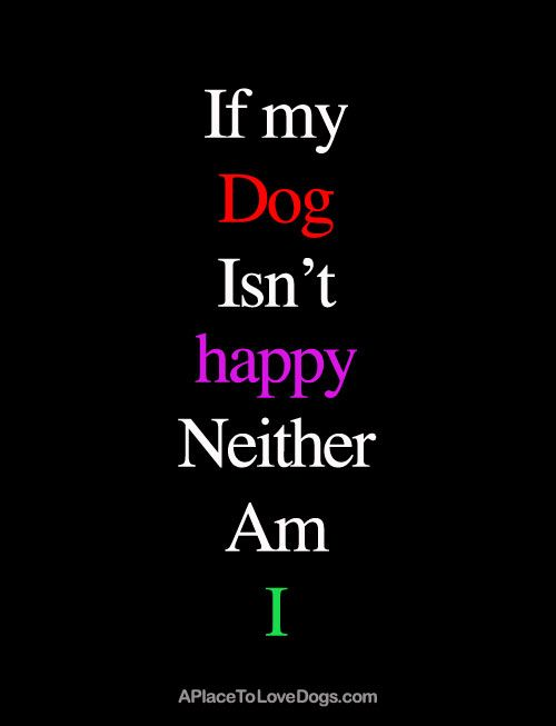 I Love My Dog Quotes Amusing I Love My Dog Quotes 02  Quotesbae