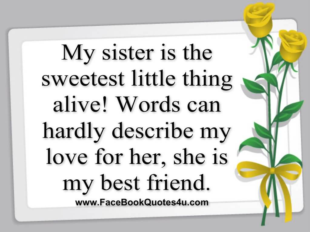 Love My Sister Quotes Extraordinary I Love My Sister Quotes 20  Quotesbae