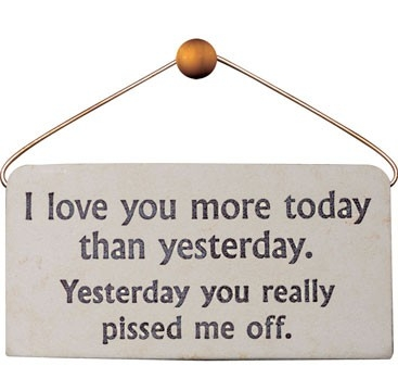 20 I Love You More Than Funny Quotes Images Quotesbae