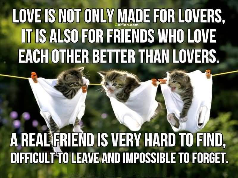 Inspiring Quotes About Friendship And Love Simple Inspirational Quotes About Friendship And Love 13  Quotesbae