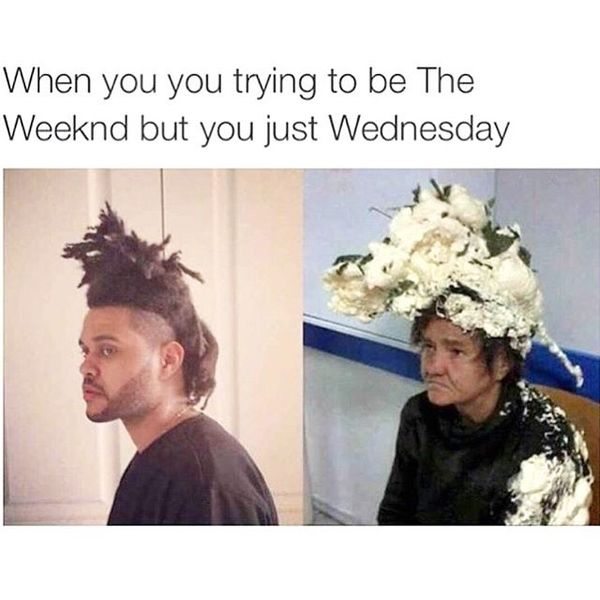 wednesday morning jokes funny
