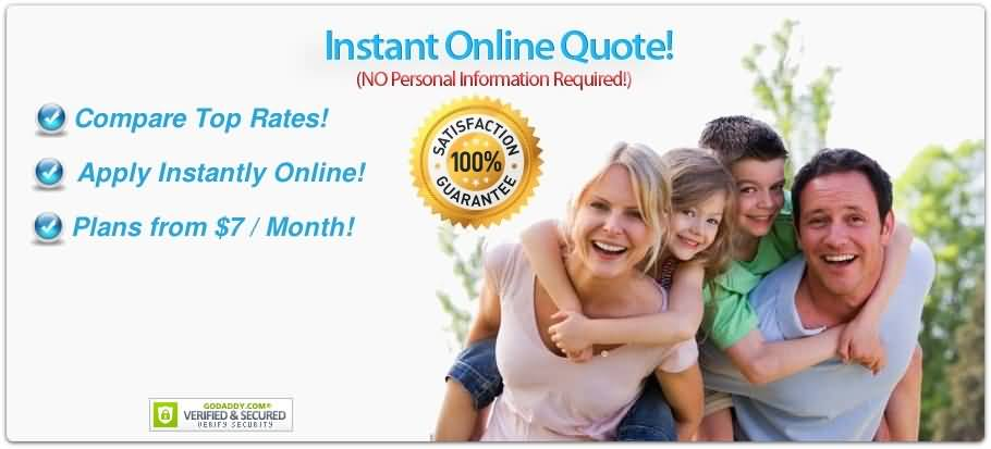 Online Life Insurance Quotes Custom Instant Online Life Insurance Quote 07  Quotesbae