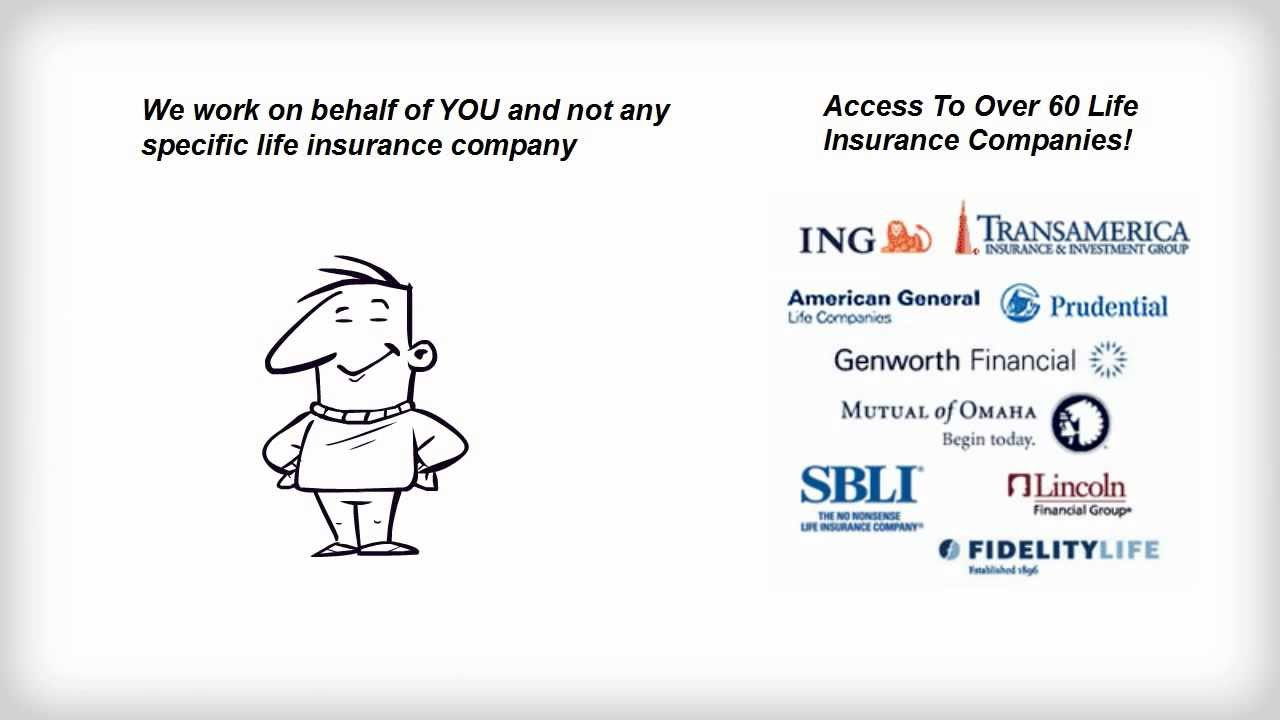 Select Quote Life Insurance 100  Insurance Quotes Gateway   100 Insurance Quote Alfa Alfa