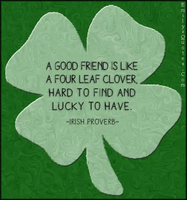 irish friendship quotes