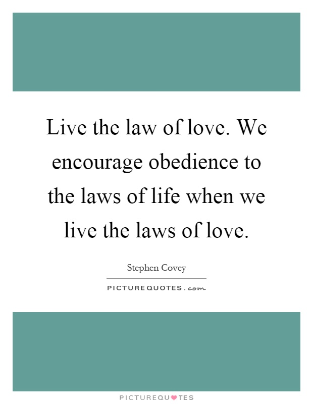 Laws Of Life Quotes Amazing Laws Of Life Quotes 19  Quotesbae