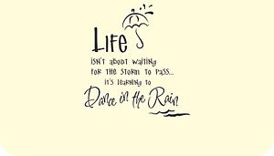 Life Dancing In The Rain Quote 18