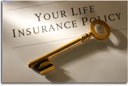 Life Insurance Canada Quotes Custom Life Insurance Canada Quotes 10  Quotesbae