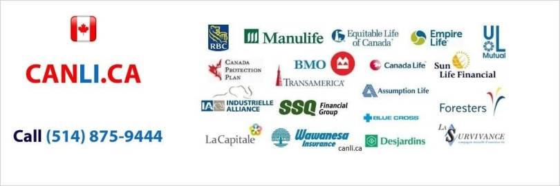 Life Insurance Canada Quotes Amusing 20 Life Insurance Quotes Canada With Pictures  Quotesbae