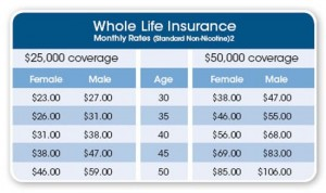 Life Insurance Quote Comparison Captivating Life Insurance Quotes Comparison 07  Quotesbae