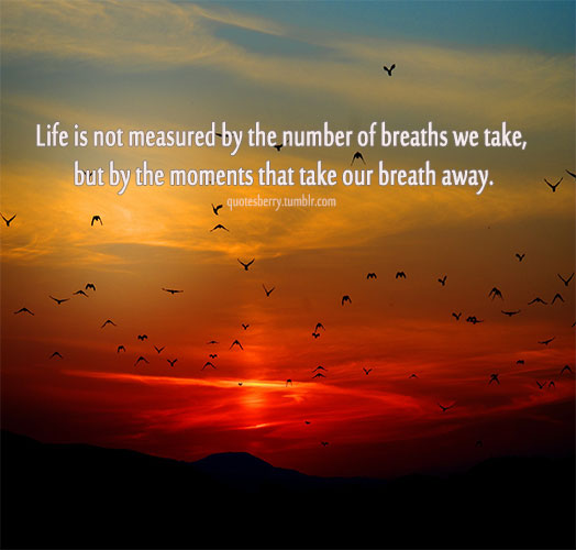 Life Is Not Measured By The Breaths Quote Gorgeous Life Is Not Measuredthe Breaths Quote 16  Quotesbae