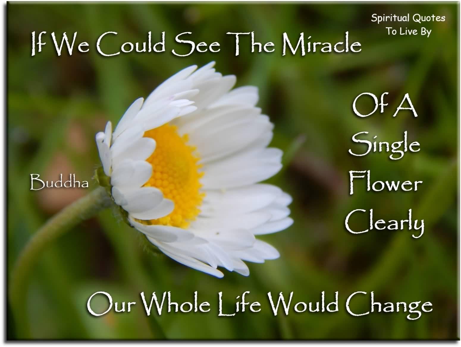 Life Spiritual Quotes Life Spiritual Quotes 05  Quotesbae