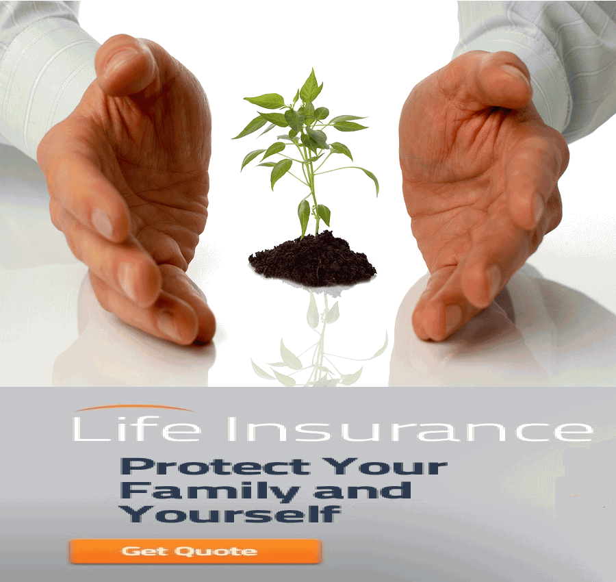 Long Term Life Insurance Quotes Alluring Long Term Life Insurance Quotes 08  Quotesbae
