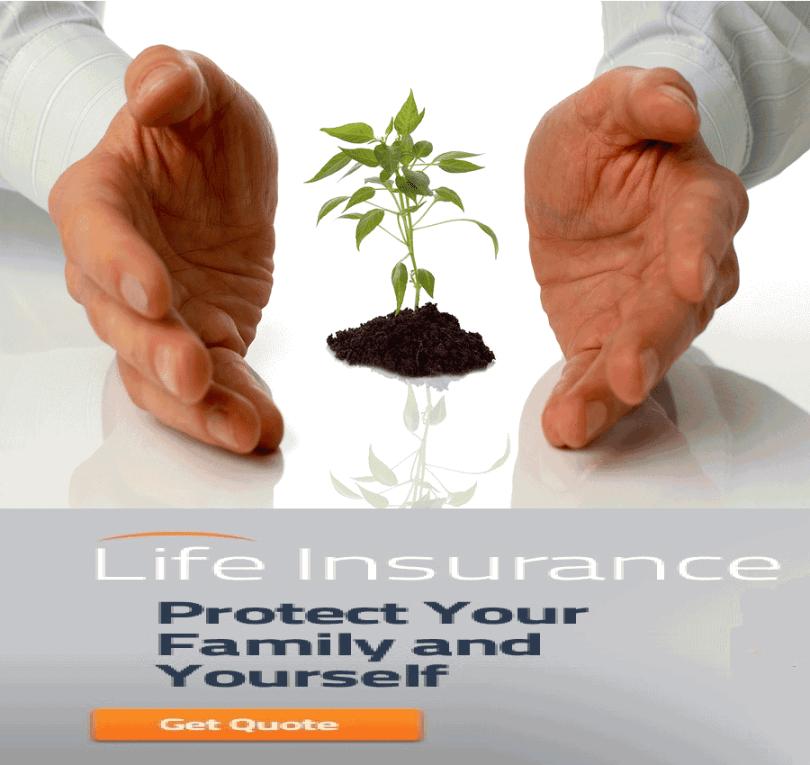 Long Term Life Insurance Quotes Entrancing 20 Long Term Life Insurance Quotes And Photos  Quotesbae